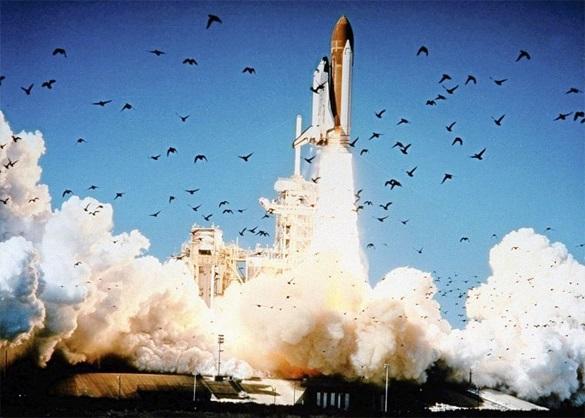 Иран начал строительство своего первого космического орбитального корабля. 292985.jpeg