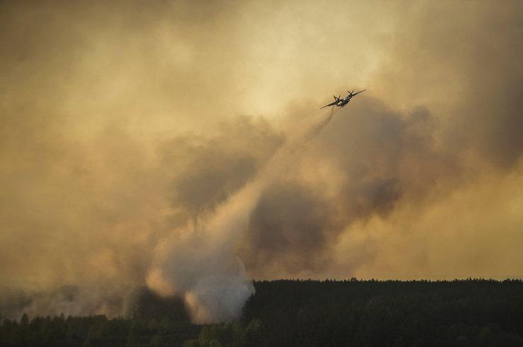 Пожары в Чернобыльской пуще не несут угрозы радиоактивного заражения, уверены ученые. Чернобыль, тушение пожара