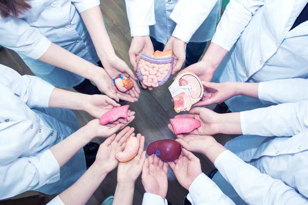 Трансплантология - закрытая тема для России. трансплантация