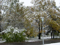 Москва увидит снег уже на этой неделе
