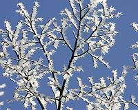В Забайкалье вместо оттепели начались морозы