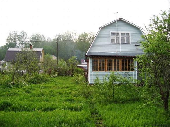 Что произойдет с дачами в 2019 году — главное о садово-огородной реформе. 395994.jpeg