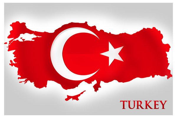 ВСтамбуле прошли митинги противников Эрдогана