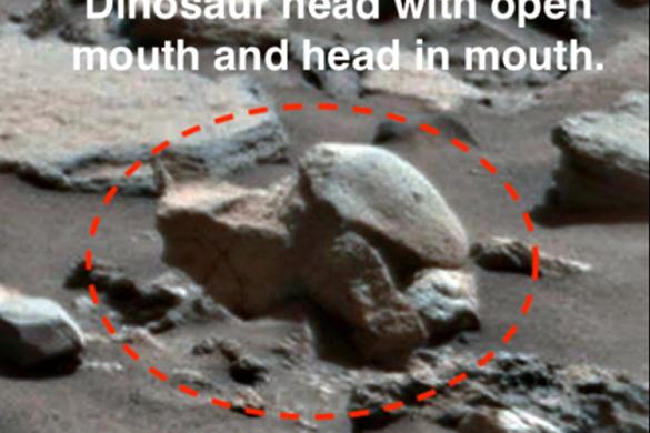 """Уфолог """"нашел"""" на Марсе голову динозавра. Уфолог нашел на Марсе голову динозавра"""