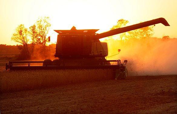 Сельхозпроизводители Кубани надеются на азиатских инвесторов. Комбайн убирает урожай