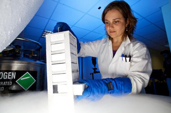 Ученые: значимости диет на базе ДНК преувеличена. 383996.jpeg