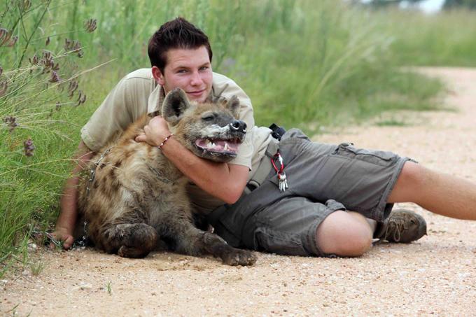 Школьник, подружившийся с гиеной. С хищниками на ты