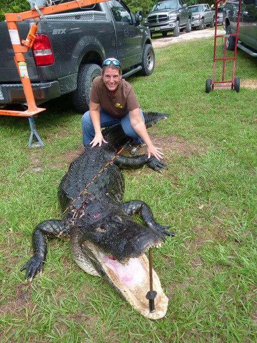Ловись, крокодил, большой и маленький! Зубастая удача