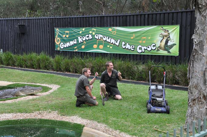 В Австралии крокодил украл газонокосилку