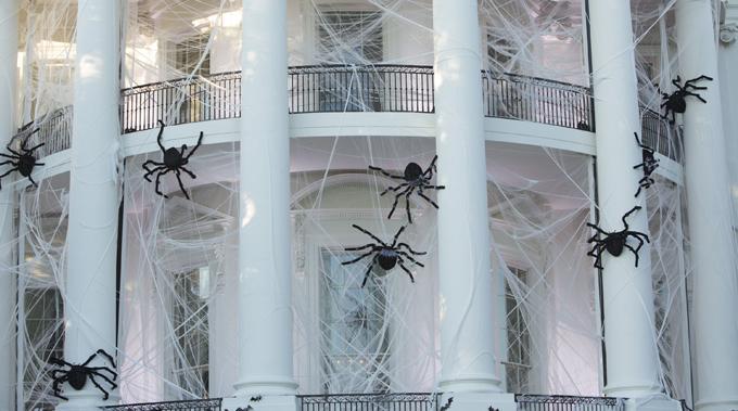 Паучье гнездо Трампа