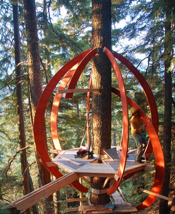 Дом на дереве – мечта экстремала