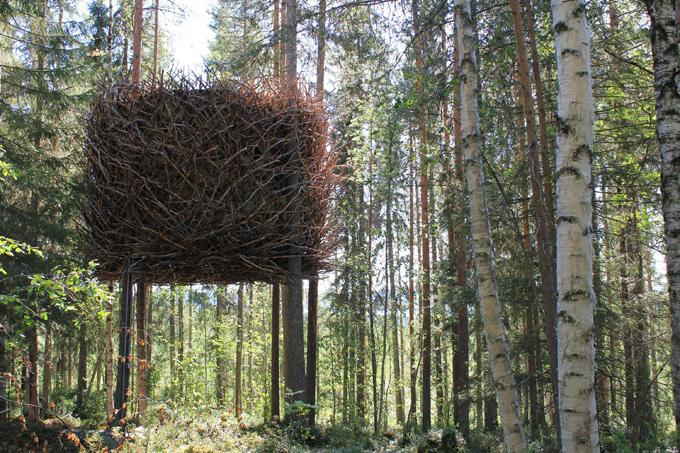 Отдых на дереве