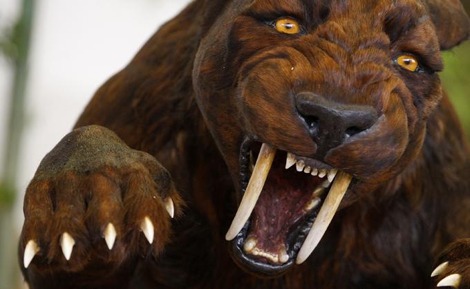 Вымершие животные снова воскреснут. Саблезубый тигр