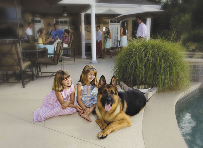Сторожевой пес за 230 тысяч долларов. Верный товарищ