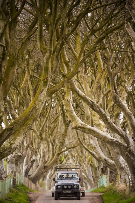 Там лес и дол видений полны...