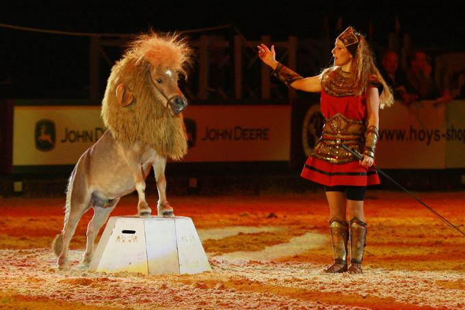 На арене цирка! Пони-лев!