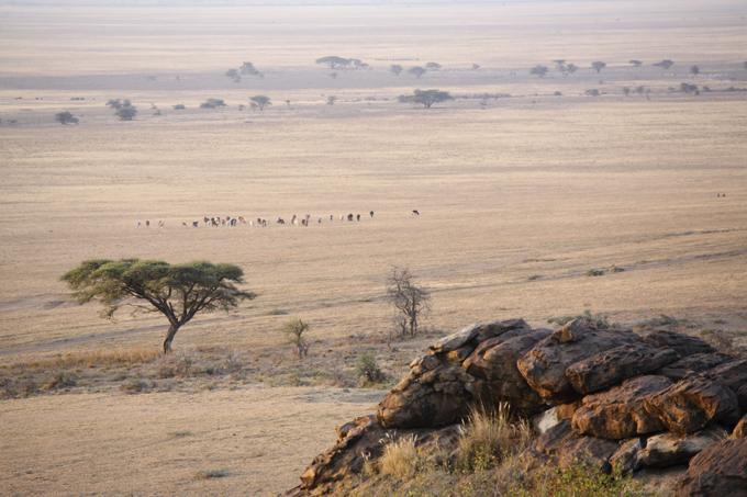 Танзания. Колыбель человеческой цивилизации