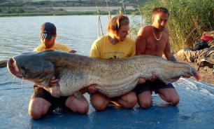 Помогает ли рыбе, то, что ее выпускают на волю