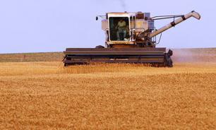 Россия прокормит полмиллиарда человек, помогут колхозы - мнение