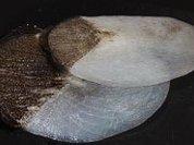 Бронежилет из рыбьей чешуи