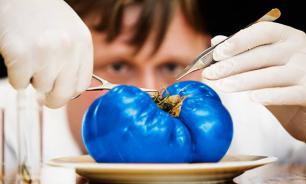 ГМО: Ретрограды опаснее синих помидоров