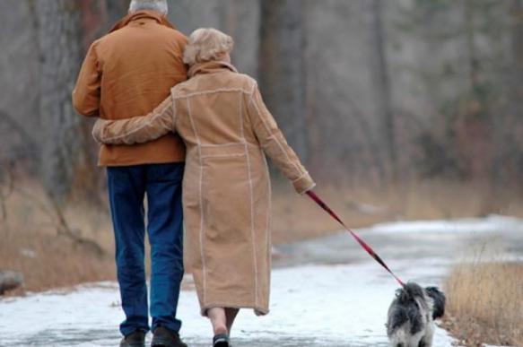 Собаки москвичей живут лучше пенсионеров из провинции