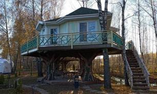 Отель на дереве в Новой Москве снесли как самострой