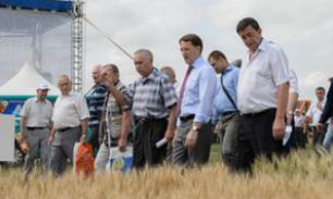 Воронежская область ставит на агропром