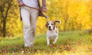 Прогулки на свежем воздухе снизят риск инсульта