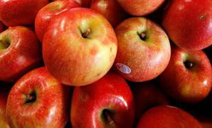В Пскове уничтожено 18 тонн яблок, ввезенных в РФ под видом польского бетона