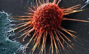 Ученые обнаружили препятствие, которое сдерживает развитие онкологии