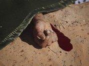 Леди Удача избежала смертной казни дважды
