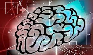 Нейробиология: Математика и интуиция связаны