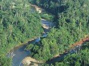 Британец пешком покорил Амазонку