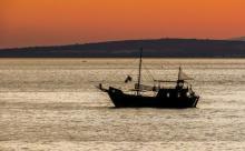 Ввод флота России в Азовское море напугал Украину