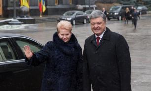 Грибаускайте пообещала Порошенко военную помощь и движение в НАТО