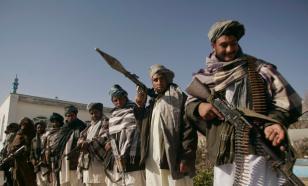 Тревога в ОДКБ: талибы* готовят вторжение в Таджикистан?