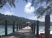 Сингапур отогнал туристов от Малайзии