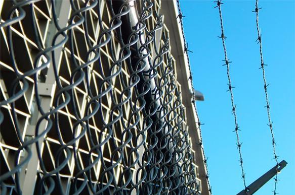 Хабаровским живодеркам грозит многолетний тюремный срок
