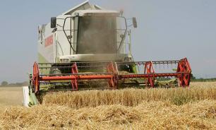 Пока Запад терпит убытки, Россия наращивает экспорт зерна