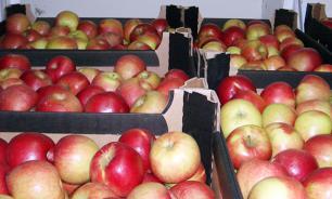 В Норильске уничтожены польские фрукты и турецкие томаты