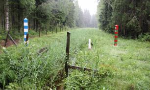 Двух россиян задержали за сбор ягод в приграничной зоне с Финляндией
