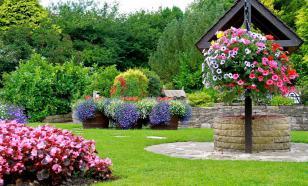 Клумбы для украшения сада: какие выбрать