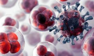 В России разработали революционный метод борьбы с раком