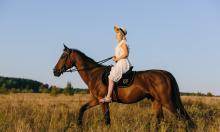 Верховая езда для новичков