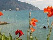 Крым без воды: сухие поля, свежие решения