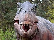 Динозавры увлекались психоделиками