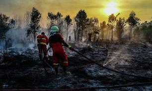 Власти Индонезии искусственно вызовут дождь для борьбы с пожарами