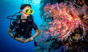 Власти Египта запретят туристам кормить рыб в ходе дайвинг-туров