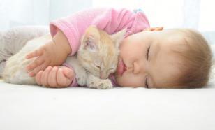 Ребенок и котенок: плюсы перевешивают минусы